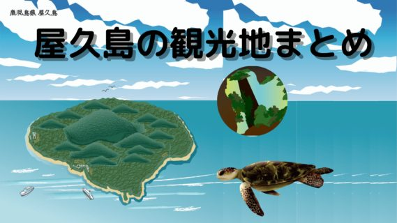 【ジャンル別】屋久島のおすすめ観光スポットを紹介【旅行記】