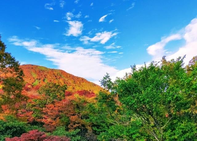 魅力度ランキング最下位とは言わせません!栃木県の観光スポット20選を紹介