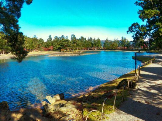 岩手県のインスタ映えする絶景スポット10選を紹介!【平泉観光を効率良く回れるモデルコースも教えます】